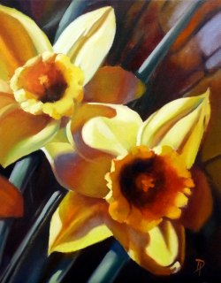 Narcissus N2 by Diana Anderson