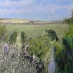 Soft Light, Early Summer by Nikki Wheeler