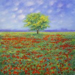 Field of Poppies by Stella Dunkley