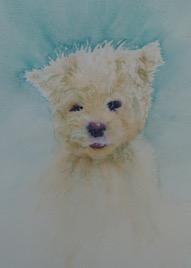 Scruff-Fluffy Dog Soft Toy