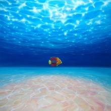 Solo under the sea
