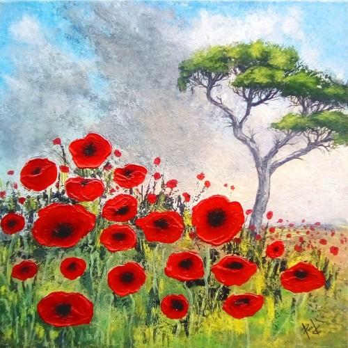 Poppy Field by Paul Chambers