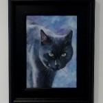 Alfie, Oil on Canvas