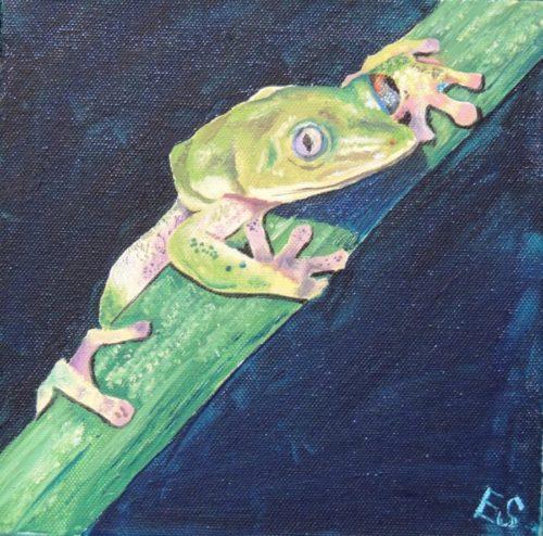 Green Arboreal Frog by Elizabeth Sadler