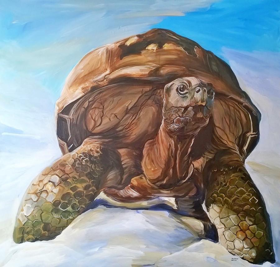 Turtle by Reneta Bachvarova