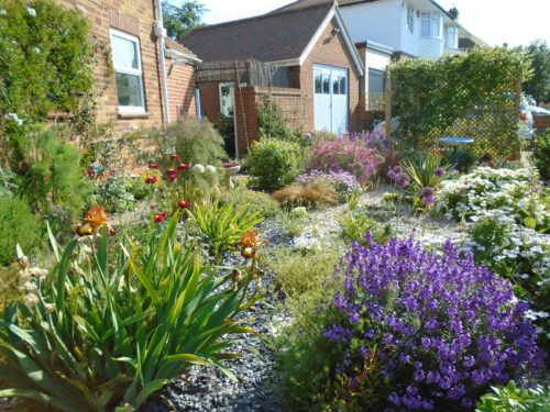 Rod Bere's gorgeous front garden