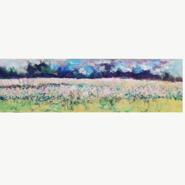 Pinky Malinky is a soft modern impressionistic view of a local poppy field