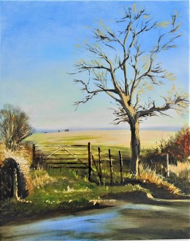 trees, sunlight, seasons, rain, December, affordable oil painting, field, animals.