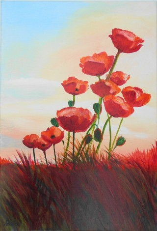 Poppies, Reds, Flowers, wildflowers, sunset. affordable oil painting.