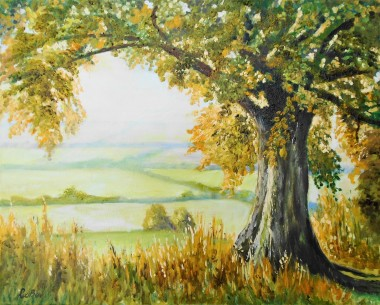 sunrise, fields, trees, misty, affordable oil painting.sSummer, peaceful.