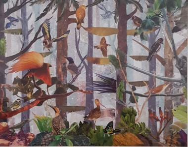 Birds animals wildlife forest trees exotic