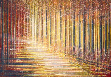 A Forest Full Of Light