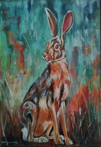 #hare #woodland #rabbit #wildlife #