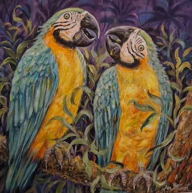 Macaws full view