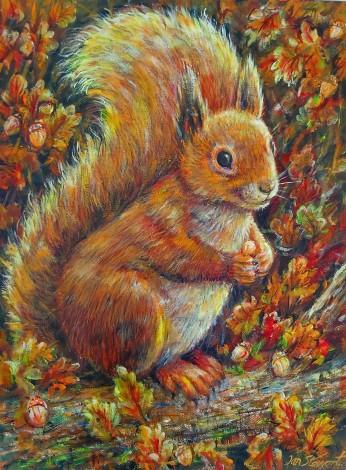 Squirrel full view