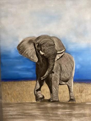 Pastel portrait of an African elephant