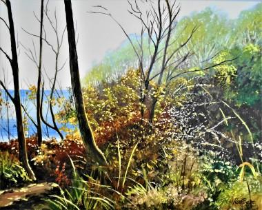 sunlight, Folkestone, Kent, The Warren, trees, sea,coastal, affordable oil painting. landscape,