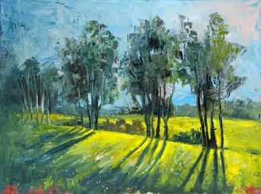 nature, park, outside, sunshine, summer, trees, green, grass, sun, sunny, landscape, woods, meadow