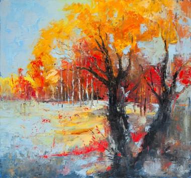 autumn, fall, colours, leaves, sky