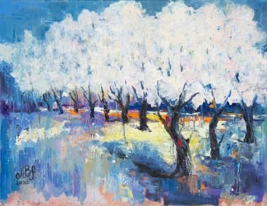 trees, blooming, blossom, garden, woodland, forest, park, spring, petals, orchard, seasons, landscape, sakura, cherry