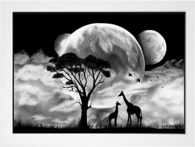 A Midnight Walk