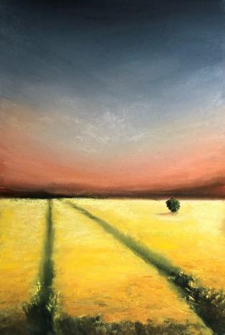 Rapeseed Field, Dusk by Geraldine Segre