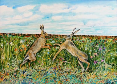 Boxing hares in the field