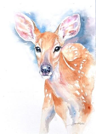 Deer Diva