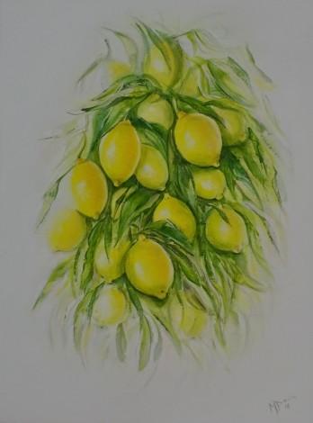 The Beautiful Lemon
