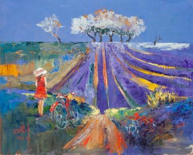 lavender, field, bike, meadow, tree, nature, landscape, countryside, summer, seasons, sunny