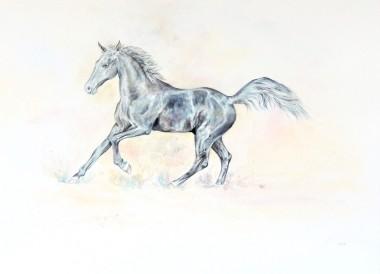 Dancing Black Horse