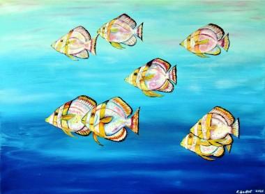 Fish wildlife artTropical Wildlife