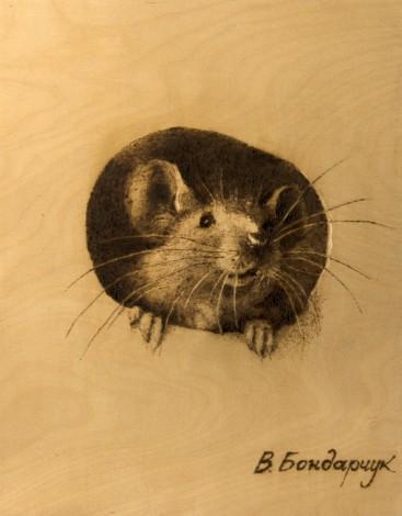 Мышка, животные, дерево