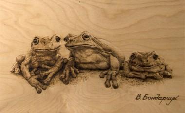 frogs animals tree figure gossip rumors