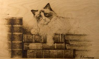 cat books story tales