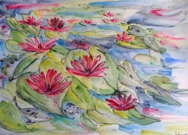 Waterlily World