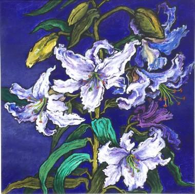 main lily