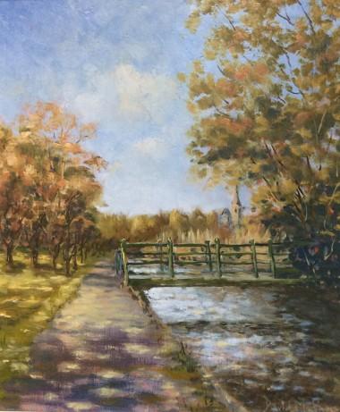 Tavistock canal walk