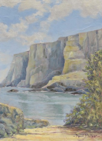 Hartland Quay oil painting by David Mather