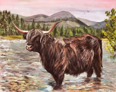 Highland cow in rocky river