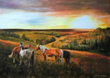 #ponies #newforest #sunset #landscape #wildlife
