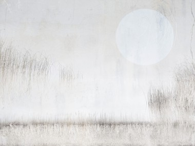 Lough Boora Blue moon