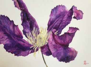 clematice