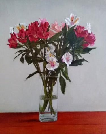 Lily of the Incas 4