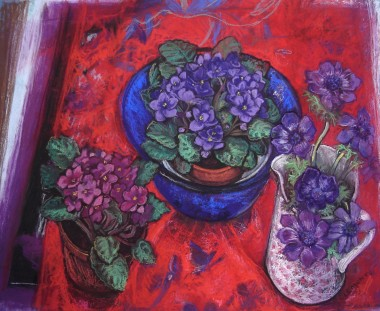 main view African violets