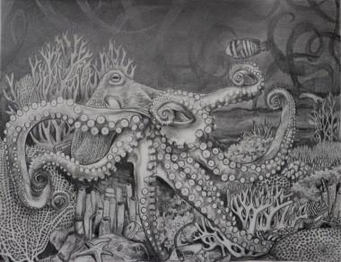 Octopus 'King'