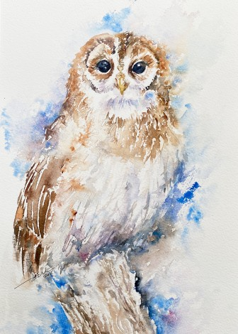 Odette the Owl