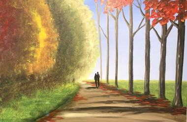 Peaceful Autumnal Walk