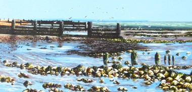 Seashore and Seagulls