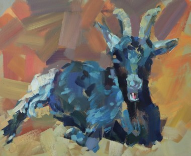 Seated Goat
